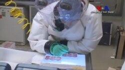 Ebola Tehdidi Devam Ediyor