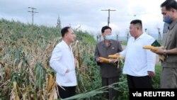 김정은 북한 국무위원장이 황해남도 태풍 피해 지역을 방문했다고, 27일 관영매체가 전했다.