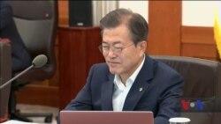 Південні корейці не поспішають вірити у повне роззброєння Корейського півострова. Відео