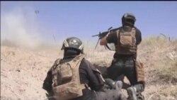 Irap Fallujah