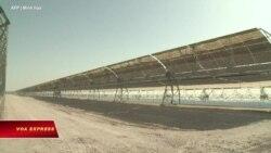 Mỹ sắp quyết định điều tra chống gian lận đối với tấm pin mặt trời nhập từ VN