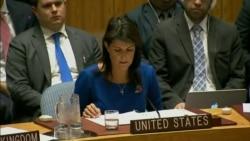 Ante la ONU, EEUU justifica acciones en Siria