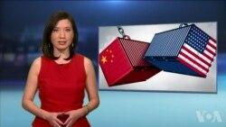 美国万花筒:美中贸易战该不该打?网上达人时尚风向标;电脑夹克你买了吗?