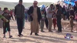 前线报道:摩苏尔战况激烈 每天数千人出逃