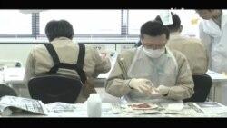 Як японці слідкують за радіацією у харчах