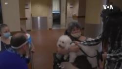 治療犬幫助療養院居民脫離孤獨的痛苦