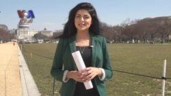 کہانی پاکستانی:امریکی سیاست میں پاکستانیوں کا حصہ