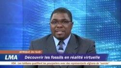 Découvrir les fossiles en réalité virtuelle