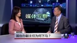媒体观察:国台办副主任为何下马?