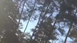 فیلم ارسالی شما: نیروی انتظامی مانع حضور مردم و جشن گرفتن در تخت جمشید شد
