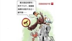 火墙内外:禽流感再现百姓质疑官方应对不力 戴上校愤青言论突显激进民族主义