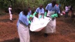 Ébola - público