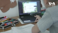 Як пандемія шкодить та сприяє школам українознавства у США. Відео