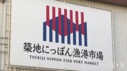 日本宣布恢复商业捕鲸