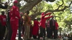 Zimbabwe Opposition Calls on Electoral Body to Deliver Credible Elections