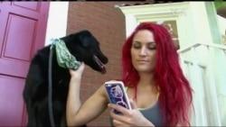 """Собаку """"вигуляє"""" мобільний додаток. Відео"""