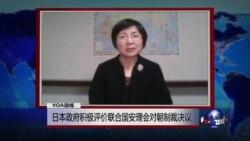 VOA连线: 日本政府积极评价联合国安理会对朝制裁决议