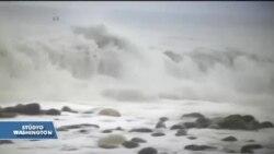 Florida Matthew Kasırgası'na Hazırlanıyor