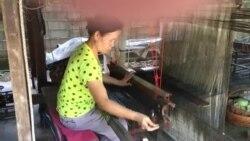 Nang Kain