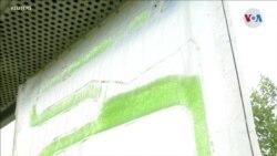 CIENCIA/AMBIENTE: Captura carbónica con algas