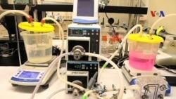 Công nghệ nano giúp đem tới nước sạch, vừa túi tiền