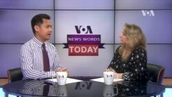 VOA News Words Today: Malaria