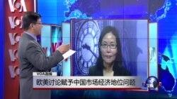 VOA连线: 欧美讨论赋予中国市场经济地位问题
