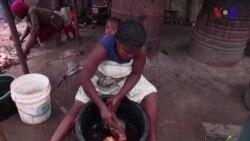 As Long as Ebola is Present, Avoid Bush Meat