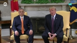 «Несколько неоднозначный, как и я»: Трамп и Орбан провели встречу в Белом доме
