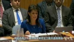 美国及盟国:打击叙利亚是合法、正当的
