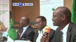 VOA60 AFIRKA: NIGERIA Bankin Raya Kasashen Afirka Zai Zuba Jarin Dala Militan 363 A Fannin Wutar Lantarki Ta Najeriya