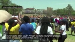 Local Video Shows Student Protests in South Africa
