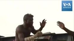 Des producteurs parient sur le Dambe, art martial nigérian