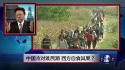 焦点对话:中国冷对难民潮,西方自食其果?