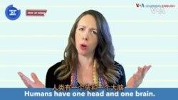 一分钟美语--Two Heads Are Better Than One