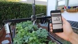 Robot làm vườn