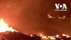 Блискавки у Каліфорнії спричинили одну з найбільших лісових пожеж. Відео