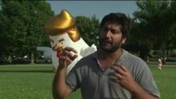 白宫附近现巨型充气鸡 恶搞总统