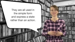 Everyday Grammar: Stative Verbs