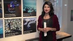 کہانی پاکستانی:بدلتا موسم اور ہم