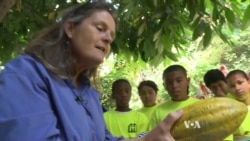 Interactive Program Teaches About Plants