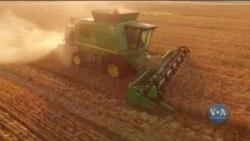 Ринок землі в Україні - крок до Європи чи до хаосу? Як оцінюють реформу у Світовому банку та що кажуть експерти. Відео