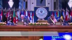 """蒂勒森呼吁盟友持续打击""""伊斯兰国""""组织"""
