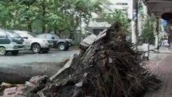 13 người chết vì bão Haiyan ở Việt Nam