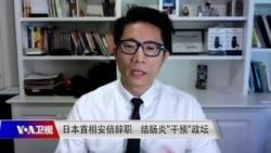 """时事大家谈:日本首相安倍辞职 结肠炎""""干预""""政坛"""