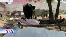 """'Bão' covid ở Ấn: Bệnh viện quá tải, dân tự mở 'bệnh viện lộ thiên"""""""