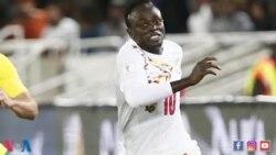 VOA Sports du 14 novembre 2017 : le Sénégal en route pour la Coupe du monde 2018