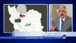 فریبرز رئیس دانا: گرانی ارز تاثیر منفی و سختی بر بخش تولید اقتصاد ایران خواهد گذاشت