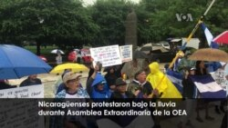 Nicaragüenses protestaron frente a la OEA