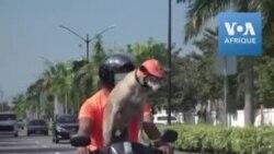 Casque et lunettes à l'appui, voici Bogie, le chien-motard des Philippines